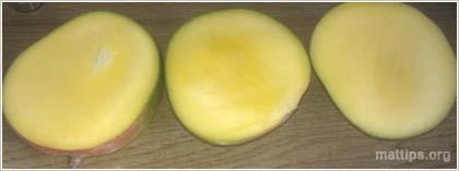 Kutte mango
